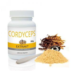 Cordyceps extrakt - imunita