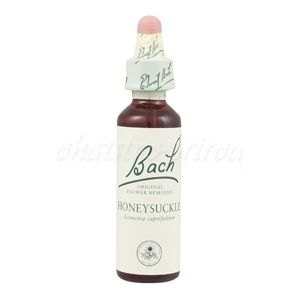 Honeysuckle - Zimolez kozí list 20 ml - bachove kvapky